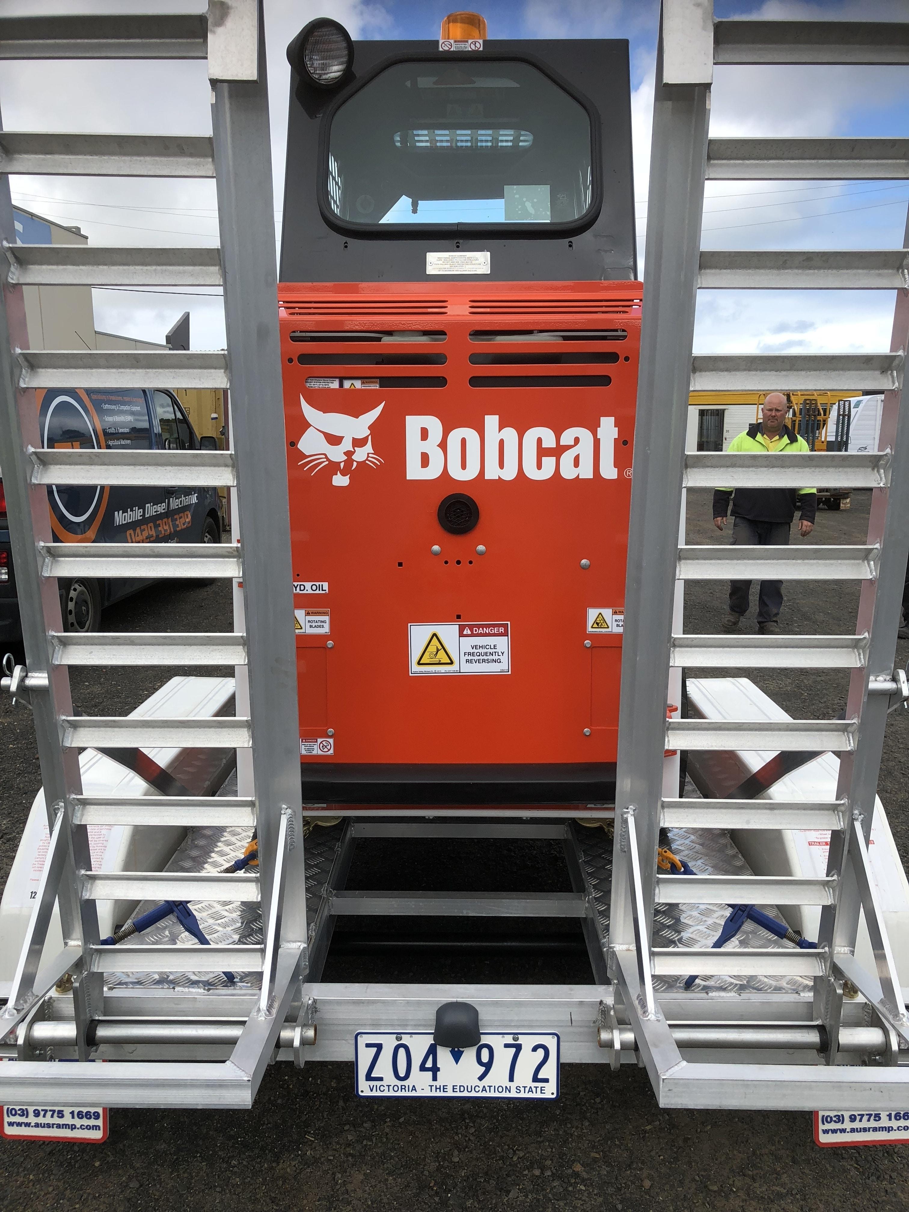 bobcat_rear